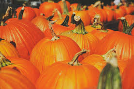 Halloween Is Not A Satanic Holiday by The Rabbit Room Making Peace With Halloween V1 2