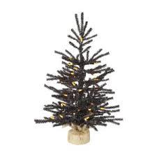 Potted Christmas Tree by Potted Christmas Trees Hayneedle