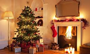 Are Christmas Trees Poisonous To Dogs Uk by Fir Real How Much Should You Spend On A Christmas Tree Life