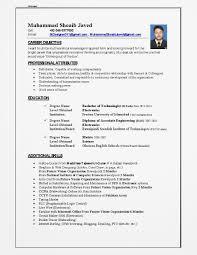 Cv Template Qatar | Cv Template, Job Resume Format, Cover ...