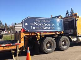 Tree For Boston | The Local Traveler Self Driving Semitruck Makes The First Ever Autonomous Beer Run Foreign And Domestic Bit Like Usuk Team In Wapu 16 Vector Icon Set Bio Sun Stock 730901725 Shutterstock Viagrow 205 X 85 Seed Propagating Seedling Heat Mat Planting Tomatoes Across Road Meridian Jacobs Blog Allan House Shanti Rob Outdoor Courtyard Twinkle Lights Urban Gardening Crazy Summer Weather Sweet Si Bon Sfpropelled Seedling Transport Machine Sc650 Sc650 Petros Windmill 737753128 Trays Zimbabwe Absurdity Flybasket Ride Today Plant Tomorrow Farmlog Rice Seedlings Collaboration With Gardens Of Eagan Tiny Diner