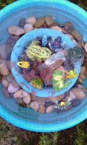 28 Best Frog Pond Images On Pinterest   Backyard Ponds, Garden ... Frog Lodge Gabe Feathers Mcgee The Whisper Folks How To Create A Wildlife Pond Hgtv Building Ogfriendly Build On Budget Youtube Backyard Home Landscapings Ideas Garden Diy Project Full Video To Make Chickadee Habitat Design And Build Wildlife Pond Saga For Frogs Part 5 Outdoor Patio Cute Round Koi Mixed With