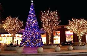 Outdoor Christmas Tree Lights Image Of Nice Ideas For Trees