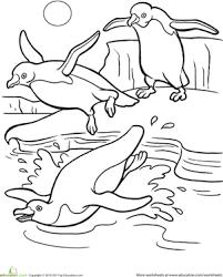 Kindergarten Coloring Worksheets Penguin Page