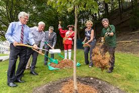 l arbre a cadre arbres canada célèbre 25e anniversaire dans le cadre de la
