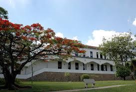 100 Fmd Casa Faculdade Mineira De Direito Wikipdia A Enciclopdia Livre