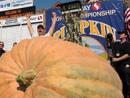 Half Moon Bay Pumpkin Patch Ca by Massive 2 363 Pound Pumpkin Sets New Record Wins Top Honors At