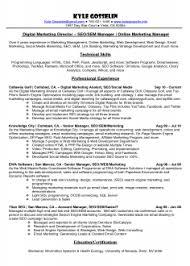 Top Internet Marketing Resume Sample Executive
