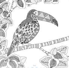 Animal Kingdom Coloring Book Printable Ebook Secret Garden Style Books
