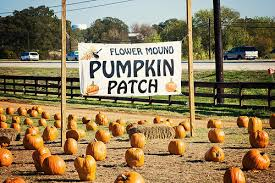 Real Pumpkin Patch Dfw by Jay Around Town The 2017 Guide To Fall Festivals U0026 Pumpkin