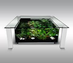 table basse avec aquarium pas cher le bois chez vous
