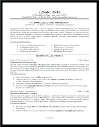 Resume Sample Profile Pattern For Resumes Summary In