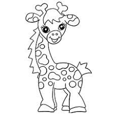 Baby Giraffe Calf Coloring Page
