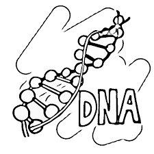Science Coloring Pages Printable