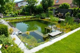 Small Swimming Pool Ideas And Pictures | HGTV's Decorating ... Beautiful Backyard Ponds And Water Garden Ideas Pond Designs That 150814backyardtwo022webjpg Decorating Pictures Hgtv 13 Inspirational Garden Society Hosts Tour Of Wacos Backyard Ponds Natural Swimming Pools With Some Plants And Patio Design In Ground Goodall Spas Small Pool Hgtvs Modern House Homemade Can Add The Beauty Biotop From Koi To Living Photo Home Decor Room Stunning Landscaping