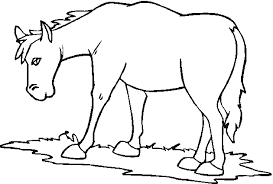 Farm Animal Coloring Pages Cute Animals