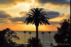 Mr Jingles Christmas Trees West Palm Beach by Good Morning San Diego News San Diego Ca