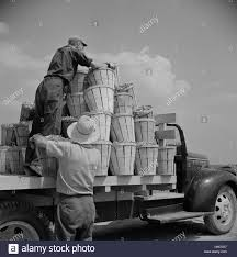 Loaded Truck Black And White Stock Photos & Images - Alamy Seabrook Nh Coastal Enginuity Bridgeton New Jersey Farm Loading A Truck With Beans 2019 Mac Trailer Mfg For Sale In Seabrook Hampshire Pm Service Eagle Equipment Cporation Picked By Day Laborers From Nearby Towns Dump Trucks In Cassy Arsenault On Twitter Friends Of Couple Hit And Used For Cmialucktradercom Day To Pick String Are Brought Emerald Shores Apartment Fire Tx League City V Flickr England Paving Co Llc Center Image Proview