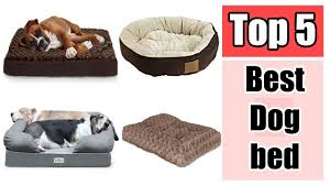Top Rated Orthopedic Dog Beds by Petfusion Ultimate Pet Bed Top 5 Best Dog Bed Reviews Youtube