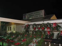 Harrows Artificial Christmas Trees by Holiday Guide Places To Purchase Christmas Trees In Farmingdale