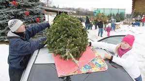 Wadsworth Ohio Christmas Tree Farm by Christmas Tree Collection Peterborough How To Dispose Of Or