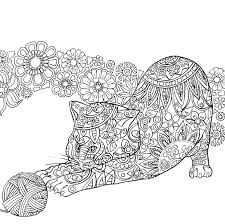 Coloring Pages Of Kittens Adult Um Cores Newspaper And Digital Free