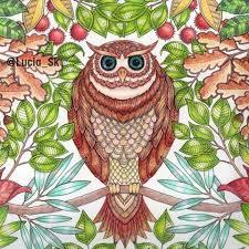 Owl From Secret Garden Colouringbook Coloringbook Adultcoloringbook Livrosdecolorir Arteterapia Secretgarden