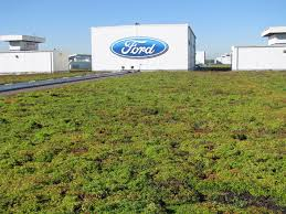 Green Roofs Are Even Greater Than We First Thought Ford Begins Retooling Dearborn Truck Plant For 2015 F150 Tour Photo Image Gallery Video Inside Fords Resigned Truck Plant To See How The F Meet Woman In Charge Of Building Bestselling Pickup Production At Video 2019 A Decade Sustainability Tnw Companion Descriptions Ieee Icps 2017 Celebrates Reopening Michigan Radio 100 Years Building Cars And Wealth Rouge Manufacturing Media Center Facing Complete Shutdown Production After Fire