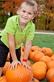 Oklahoma Pumpkin Patches by 61 Best Oklahoma U0027s Fabulous Fall Images On Pinterest Fall