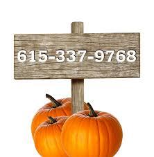 Pumpkin Patch Farms Nashville Tn by Brown U0027s Holiday Farm Add Your Slogan Here