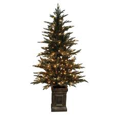 Plantable Christmas Tree Ohio by Christmas Livingmas Tree Columbus Ohio 2016living Rental In