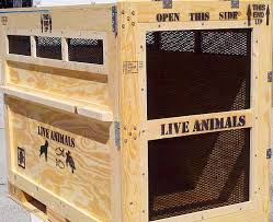 Animal Transport Crates That Can Be Loaded On Large Ships Please