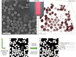 drop of blood analysis nanolive