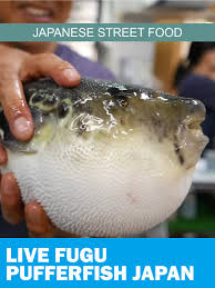 Amazon.com: Japanese Street Food - Live Fugu Pufferfish Japan ... Fugu Truck Reaches Kickstarter Goal Plans For April 1 Eater Boston Album Google Diverse Ding Scene Flourishes In Malden Herald Osaka Japan June 24 Front Stock Photo Edit Now 106724930 The Passionate Foodie Food Is Coming Food Truck A Little Bit About A Lot Of Things Page 3 Group Announces 22 Line Up At Somerville Festival Trucks Edible Fuel And Hand Holding Classic Nozzle Pumping Vector Eat Sts James Cunningham On Trucks Features Hub