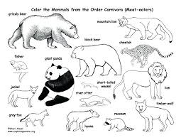 Full Image For Animal Mandala Coloring Pages Pdf Animals Book Farm Colouring