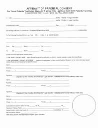Child Travel Consent Form International Inspirational Notarized Letter Template For New