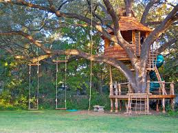 Best Treehouse Resorts In India Zoomcar