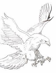 dessin pour imprimer dessin de coloriage aigle à imprimer cp00527