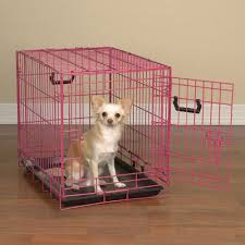 Amazon ProSelect Crate Appeal Fashion Color Dog Crates For Dogs And Pets Pet Supplies