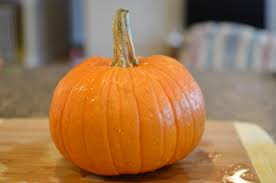 Preserve Carved Pumpkin Forever by The Provident Princess