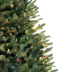 Fraser Christmas Trees Uk by Artificial Fraser Fir Christmas Tree Trees Insider Ft Tree Box