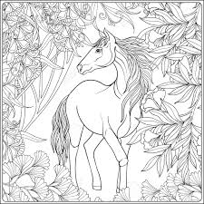Horse In Garden Illustration Coloring Book For Adult And Older Children Outline Drawing