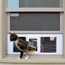 Best Pet Doors For Patio Doors by Gypsy Best Pet Door For Cats D23 In Simple Inspirational Home