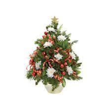 Christmas Tree Preservative Recipe Sugar by The 25 Best Christmas Tree Preservative Ideas On Pinterest