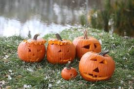 Pumpkin Patch Littleton Co by Fall Harvest Fun In Colorado Pumpkins Hayrides And More Westword