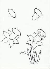 Art Class Ideas Drawing A Daffodil
