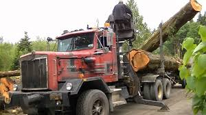 Kenworth C500 Self Loading Logging Truck Part 2 - YouTube East Texas Truck Center Used Trucks For Sale 2016 Kenworth W900l Logging For Sale Rickreall Or Cc Page 4 Bc Logging 19 Jf T800 Peterbilt Peterbilt Log Trucks For Sale In Oregon Archives Best Trucks 2002 Mack Cl713 Tri Axle Log By Arthur Trovei Sons Hayes Manufacturing Company Wikipedia Kraft 3 Axle 1999 400 Gst At Star Loggingtrucks Mack Lt Double Edge Equipment Llc Asset Forestry Western 6900xd Super Heavy Duty Applications