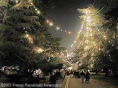 Christmas Tree Lane Fresno Homes For Sale by Fresno Ca Blossom Trail California Local Getaways