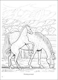 Wonderful World Of Horses Coloring Book Dover Publications