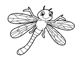 Dragonfly Coloring Page Pages Children Simple